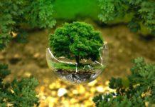 tendance ecologies 2019